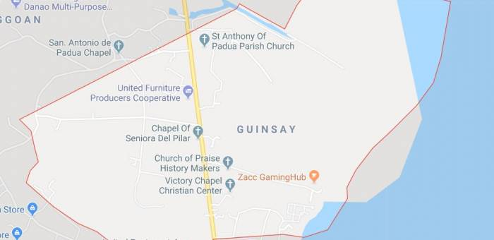 Lot For Sale In Guinsay Danao Lamudi