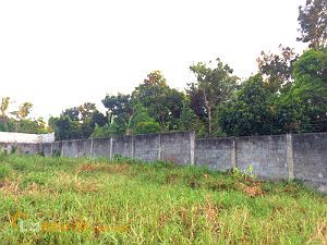 Vacant Lot in Exclusive Subdivision in Bacolod