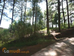 Vacant Lot Available in Baguio