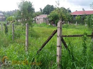Land for Sale in Banaba South