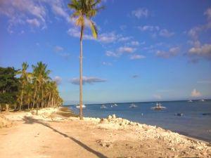 Beach Lotin Bohol for Sale