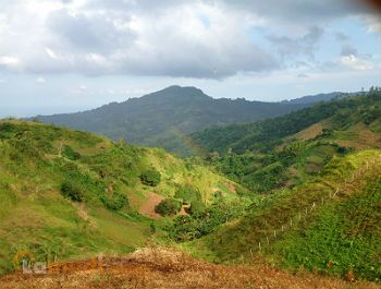 Mountainous Lot for Sale Cebu City