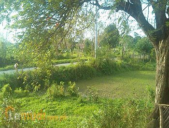 Lot for Sale Lucena City