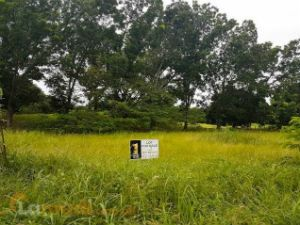 Available Lot in Pueblo Golf Estates