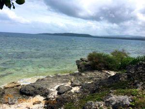 Beach Lot for Sale in Cebu