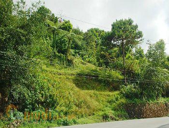 Developed Rented Land