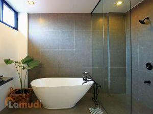 Modern Minimalist Shower and Bathtub