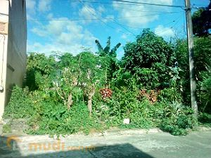 Lot for Sale in a Subdivision in Novaliches